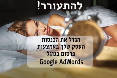 וובינר גוגל אדוורדס